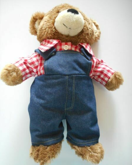 Outfit: Dungarees and red check shirt.