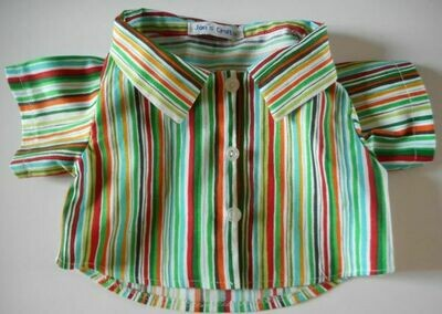 Shirt - bright green, red and white stripes
