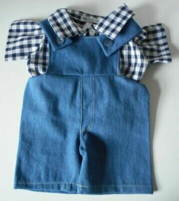 Outfit: Dungarees with navy and white check shirt.