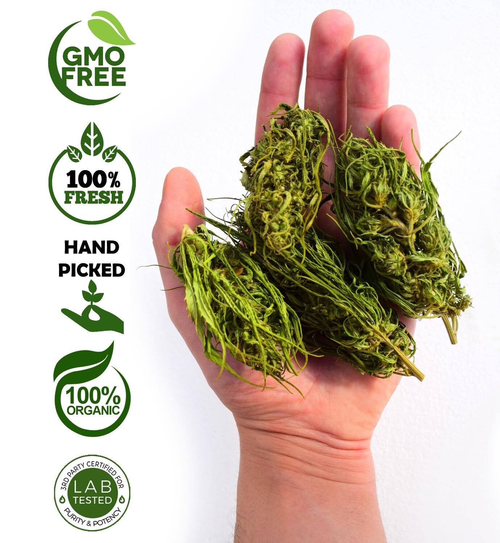 2 Kg of Hand processed Hemp buds – flowers, herbata konopna, tè alla canapa