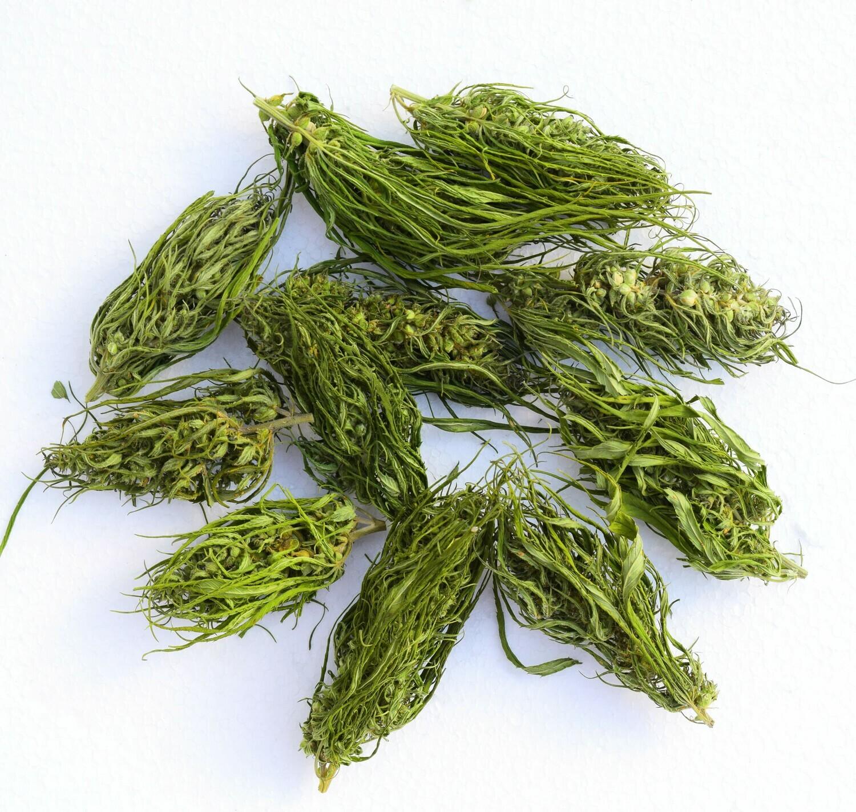 1 Kg of Hand processed Hemp buds – flowers - Kompolti strain