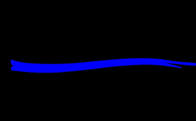 Thin Blue Line Tattered Flag