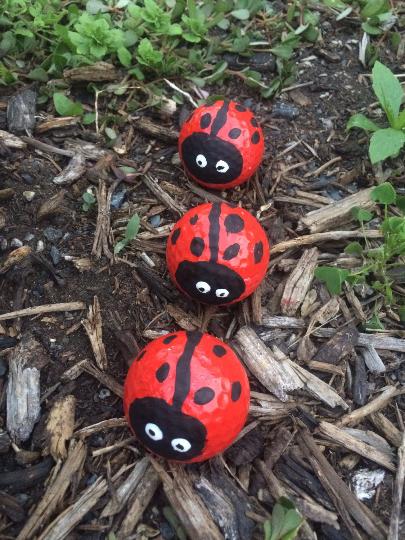 Lady Bug Golf Ball Garden Decorations