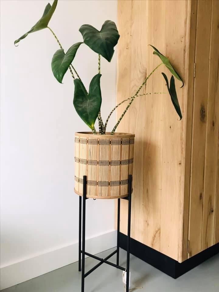 Bamboe Plantenhouder Op Stalen Frame