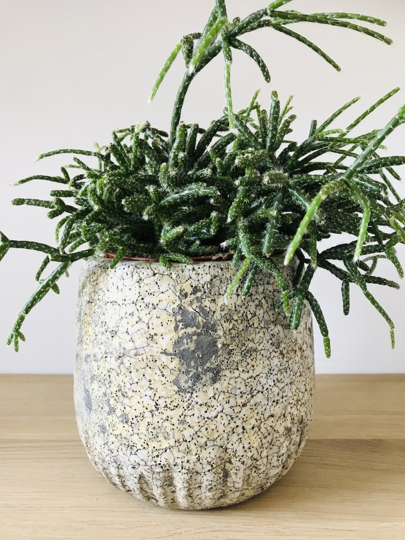 Leeff planter Pia small