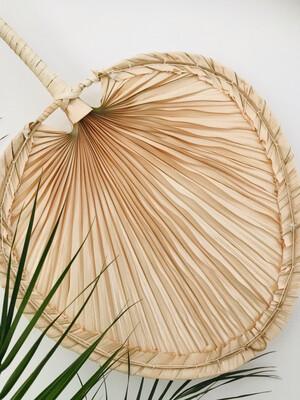 Waaier palmblad kreta