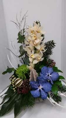 Hall arrangement Inc Vanda from 60euro