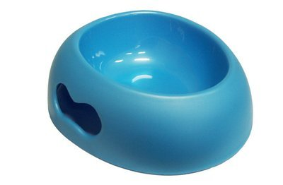 Big Dog Bowl