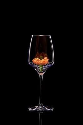 Бокал для белого вина – Красный мак.