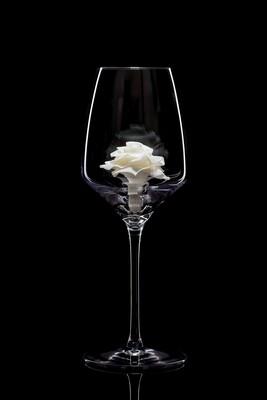 Бокал для белого вина – Роза белая.