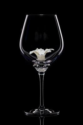 Бокал для красного вина Лилия белая
