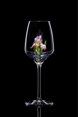 Бокал для белого вина Ирис.