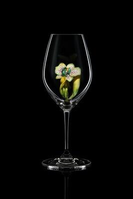 Бокал для шампанского Орхидея Каттлея, стекло Ридель.