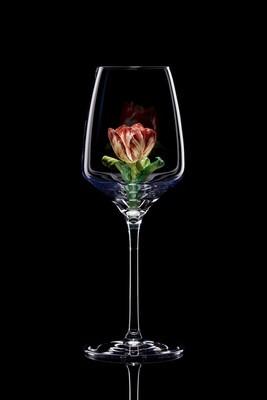 Бокал для белого вина Тюльпан.