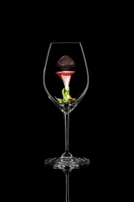 Бокал для шампанского Вьюнок розовый, стекло Ридель.