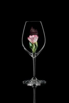 Бокал для шампанского Тюльпан, стекло Ридель.
