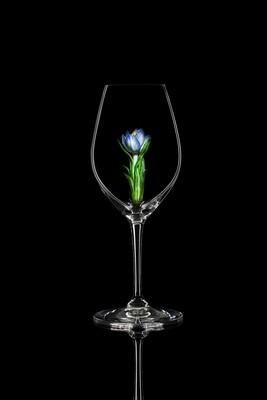 Бокал для шампанского Крокус синий, стекло Ридель.