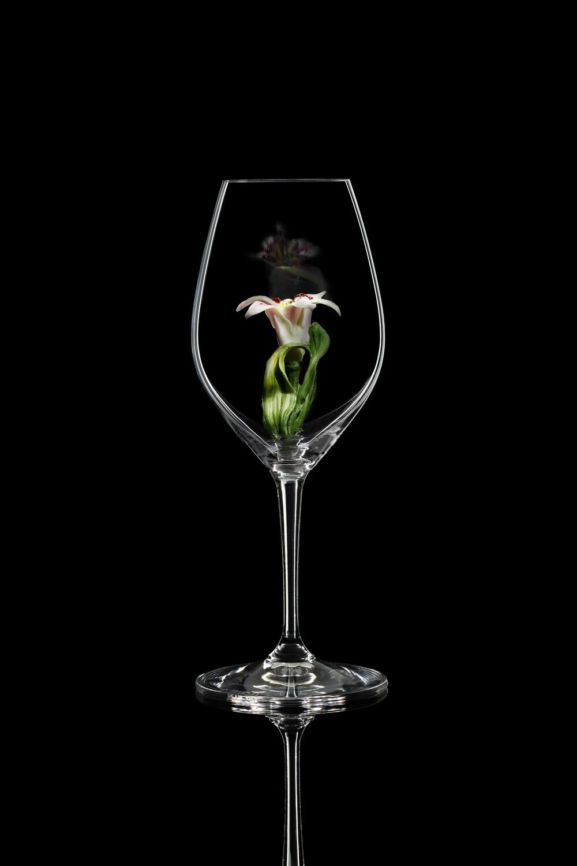 Бокал для шампанского Лилия, стекло Ридель.