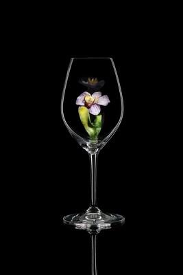 Бокал для шампанского Орхидея Ванда, стекло Ридель.