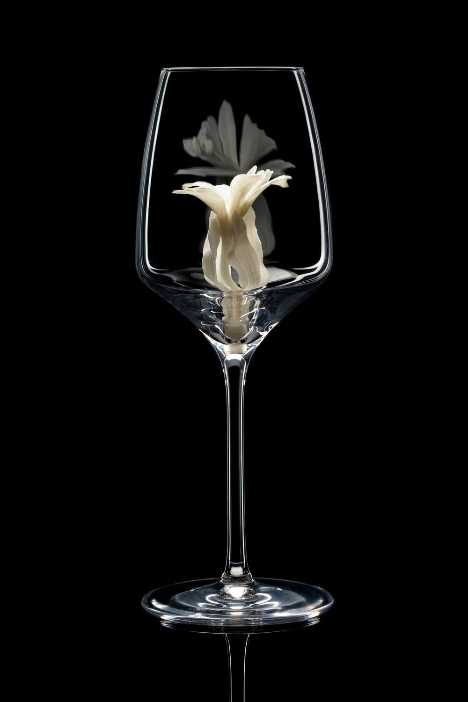 Бокал для белого вина, Альстромерия белая.