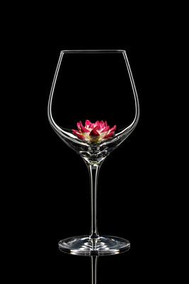 Бокал для красного вина - Лотос пурпурный.