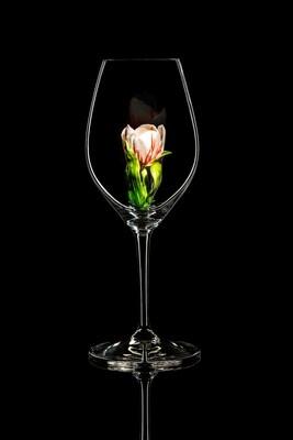 Бокал для шампанского Тюльпан красно-белый, стекло Ридель.