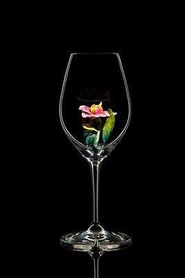 Бокал для шампанского Орхидея, стекло Ридель.