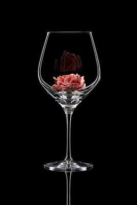 Бокал для красного вина Роза полосатая.
