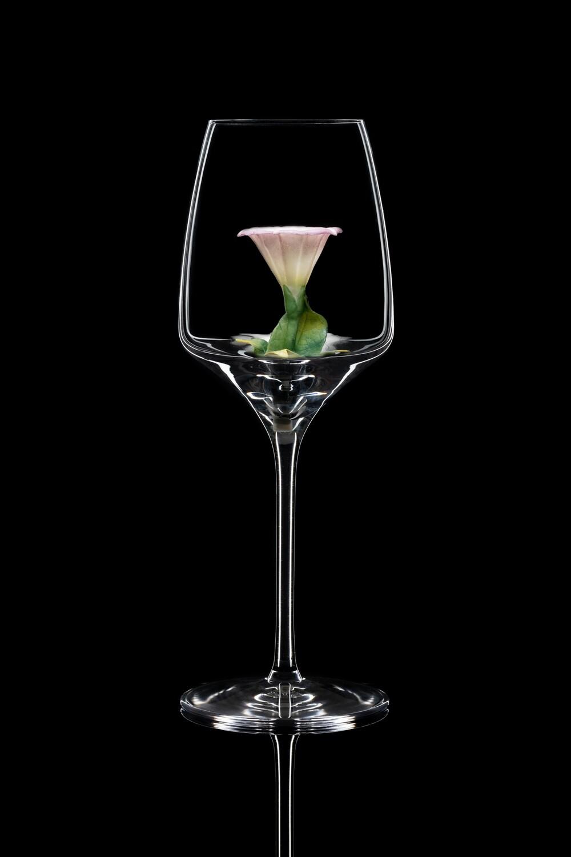 Бокал для белого вина Вьюнок розовый.