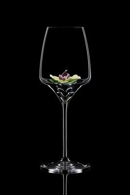 Бокал для белого вина Орхидея Каттеля. (низкая)