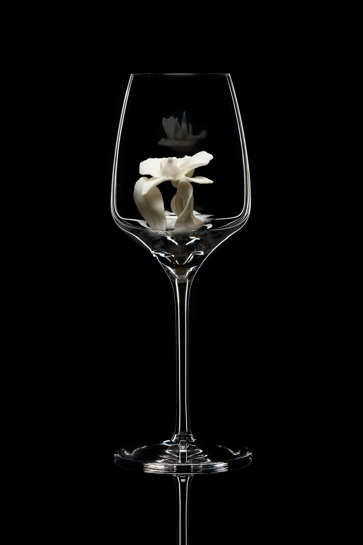 Бокал для белого вина. Орхидея белая.