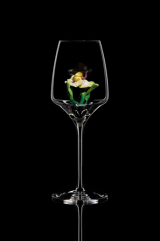 Бокал для белого вина Орхидея Каттлея.