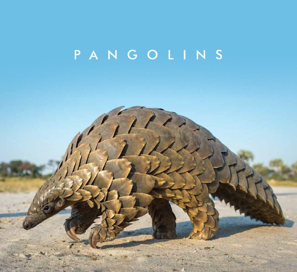 Pangolin Coffee Table Book