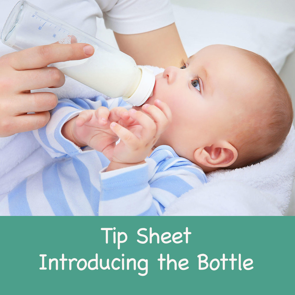 Tip Sheet - Introducing the Bottle