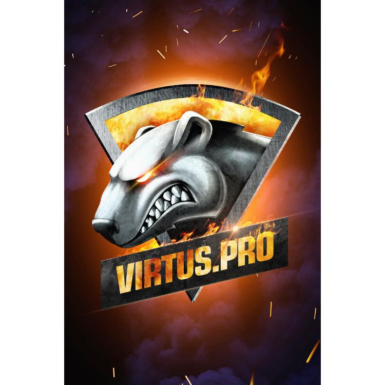 Плакат Virtus.pro