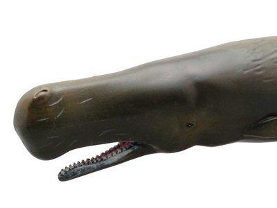 Sperm Whale PVC Rubber Model Toy