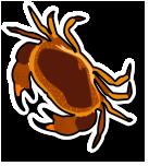 Fresh Live Crab (per kg)