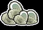 Fresh Oysters (each)