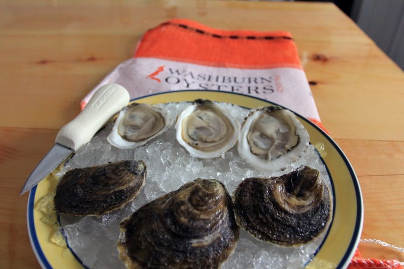 Washburn Island Oysters 100 ct