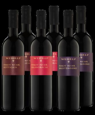 Bibersteiner Pinot noir 2018 Package - Terroir-Trilogie - 6 Flaschen