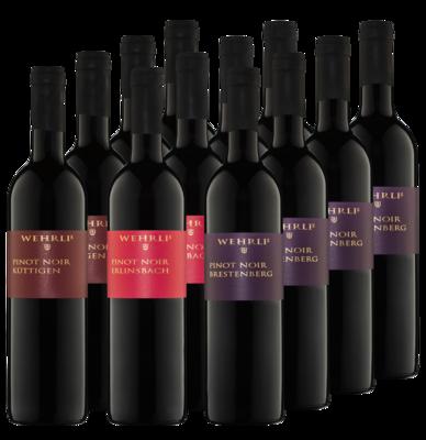 Bibersteiner Pinot noir 2018 Package - Terroir-Trilogie - 12 Flaschen