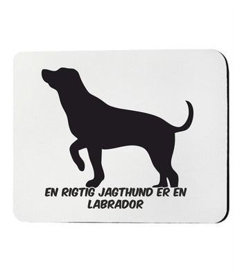 Musemåtte med Labrador