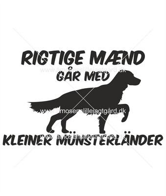 Foliemærke - Kleiner Münsterländer