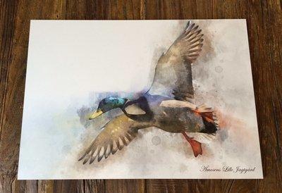 Watercolor billede med and