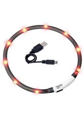 LED halsbånd - SORT