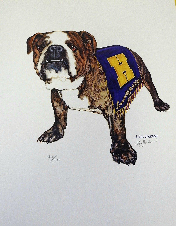 20th Century Bulldog Print (16x20)