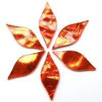 Mirror Petals - Orange
