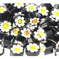 Black/white/yellow flower