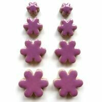 Flowers: Pretty Purple