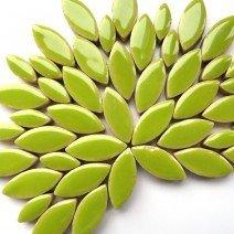 Ceramic Petals: Kiwi